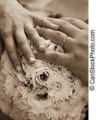 anéis casamento, sepia