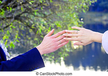 anéis, newlyweds, mãos