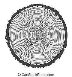 anéis, serra, corte, árvore, trunk.