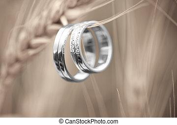 anéis, trigo, casório