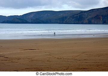 anônimo, par, em, silouhette, andar, a, praia