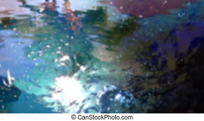 an abstract shot filming the reflections of palm trees in water to make an unusual effect