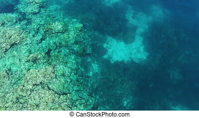 An aerial shot of coral reefs