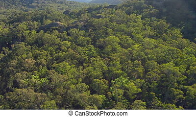 An aerial shot of mountains and forest