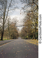 An afternoon on the autumnal road