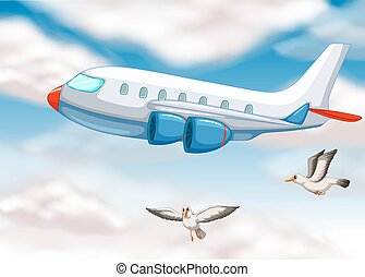 An airplane in the sky with two birds