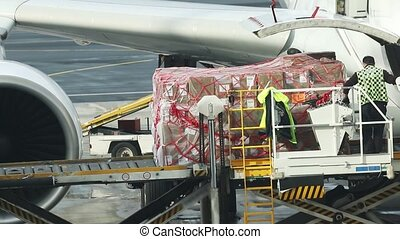 An airport - loading the cargo in the plane