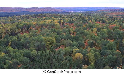 Algonquin forest overlook in autumn - An Algonquin forest...