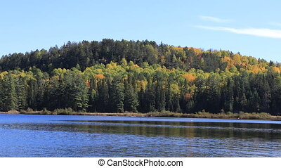 Algonquin forest overlook in fall - An Algonquin forest...