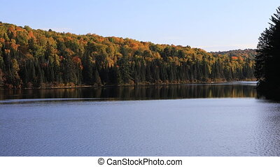 Algonquin lake and trees in autumn - An Algonquin lake and...