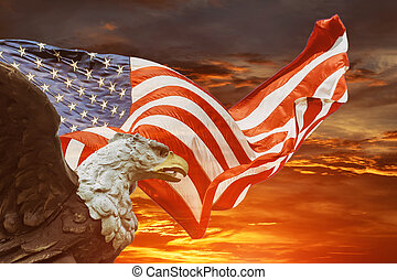 An american bald eagle on american flag