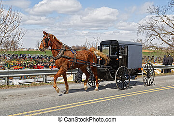 An Amish carriage in Lancaster County, Pennsylvania - An...