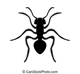 An ant icon