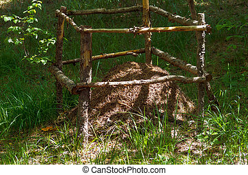 an anthill in the forest is surrounded by a fence