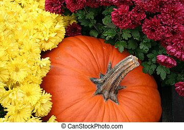 An Arrangement of Chrysanthemums and a Pumpkin Produces a Festive Autumn Display.