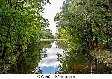 An artificial lake in a green leafy Park with a mirrored surface of the water
