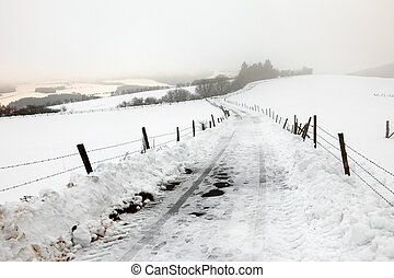 An asphalt country road in a snow storm, fields at small...