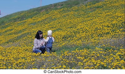An attractive woman goes by the hand with a little beautiful girl on the field, meadow with dandelions. Family, love. Slow motion