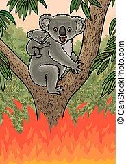 An Australian Koala was caught in a forest fire. - Fires in ...