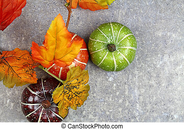 An autumn background with pumpkins