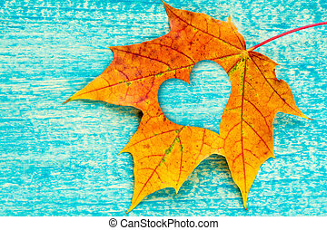An autumn leaf with heart shaped cutout