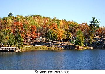 An autumn's landscape