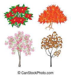 An Colorful Isometric Set of Trees and Plants