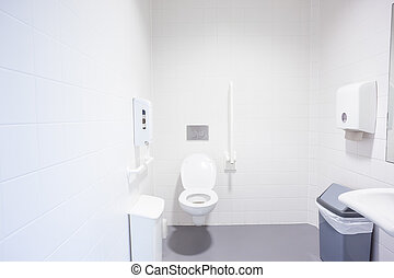 an disabled toilet