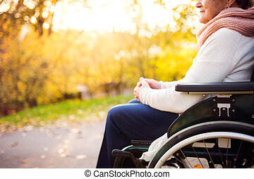 An elderly woman in wheelchair in autumn nature.