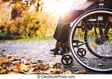 An elderly woman in wheelchair in autumn nature.