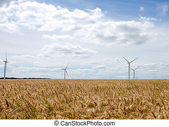 An electricity generating windmills on the gold wheat field against cloudy blue sky in England