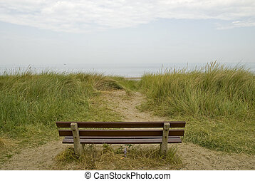 An empty bench in the dunes looking out to sea