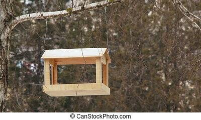 An empty bird feeders