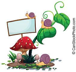 An empty signboard near the mushrooms