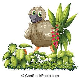 An emu hiding - Illustration of an emu hiding in the garden...