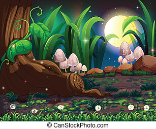 An enchanted forest - Illustration of an enchanted forest