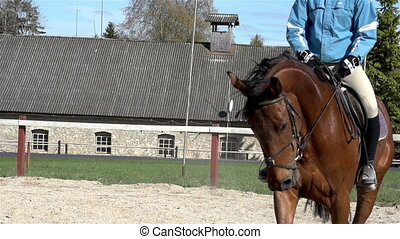 An equestrian bouncing up and down while riding the brown horse