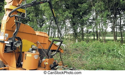 An excavator claw picking up the cut up branches - An...