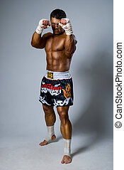 An experienced fighter kickboxer ready for a fight. full ...