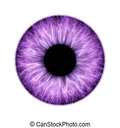 An illustration of a beautiful colored iris texture
