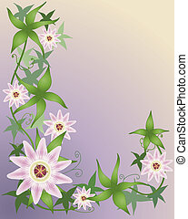 an illustration of a beautiful passion flower plant with foliage and flowers on a purple and yellow background