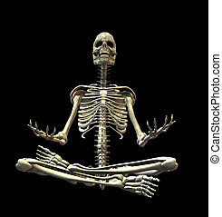 skeleton - An illustration of a skeleton isolated on a black...