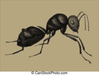 An illustration of an ant