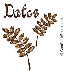 dates - an illustration of dates in a leaf design on a white...