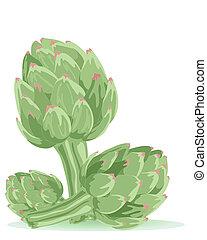 artichoke - an illustration of three artichokes isolated on...