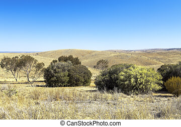 south australia - An image of a beautiful south australian ...