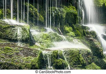 Tasmanian Waterfall