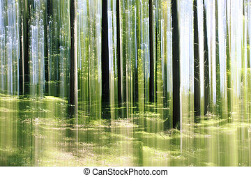 forest vertical motion blur - An image of a forest vertical...