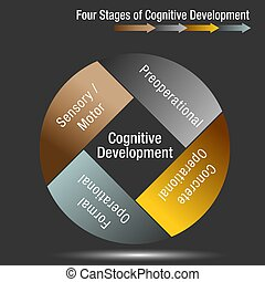 Four Stages of Cognitive Development - An image of a Four...