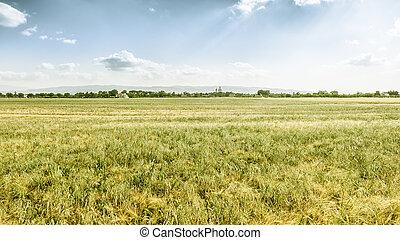 panoramic view in Italy Umbira near Assisi